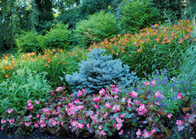 Natural planting design with annuals, perennials and shrubbery.