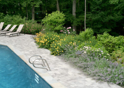 Lush perennial summer garden poolscape.