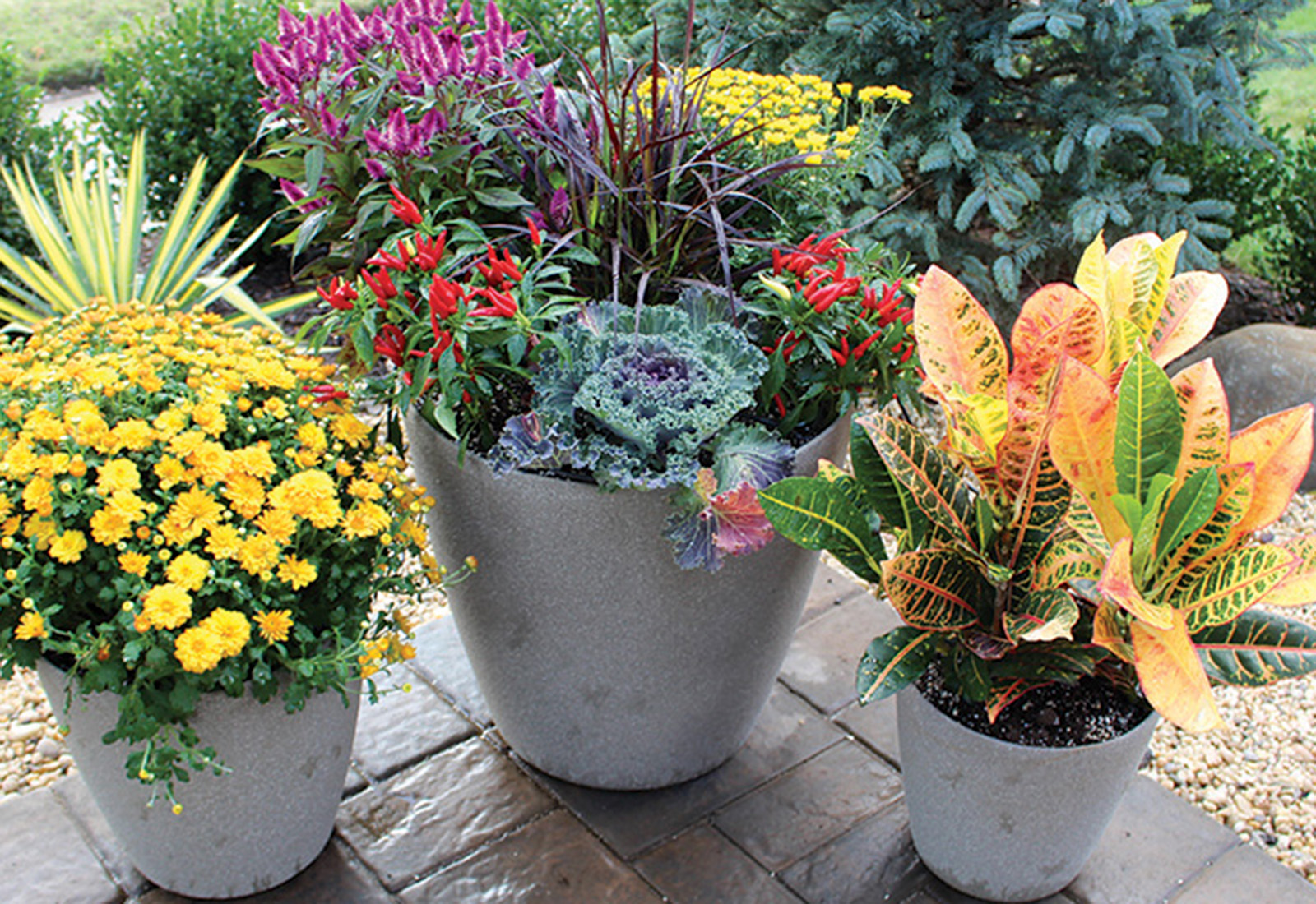 fall-planters-enteryway-pots -pavers-queens-new-york-1 copy