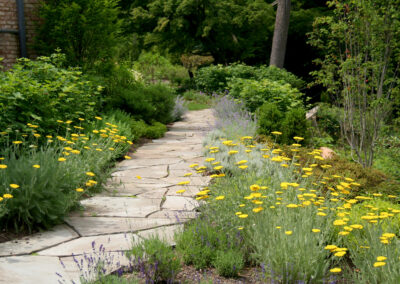 Irregular bluestone garden path through a sea of perennials.