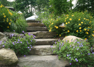 Stone garden steps and boulder retaining wall planted with flowering perennials.