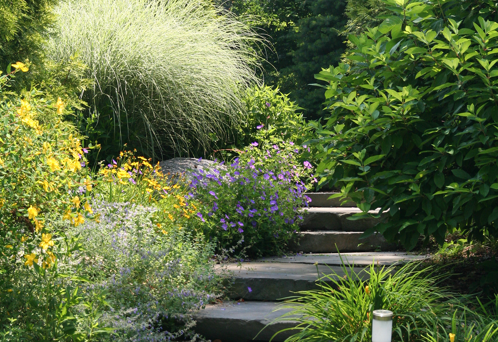 Stone garden steps surrounded by lush plants.