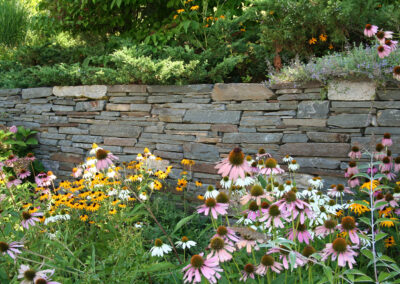 Stacked stone retaining wall and perennial garden.
