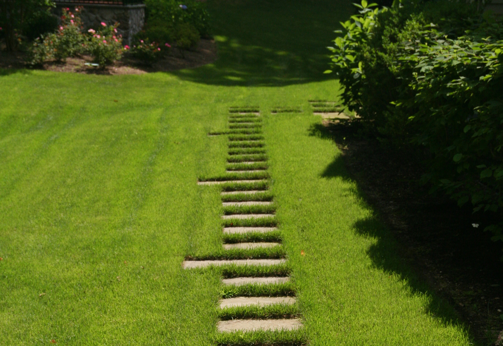 Formal pathway through the lawn.