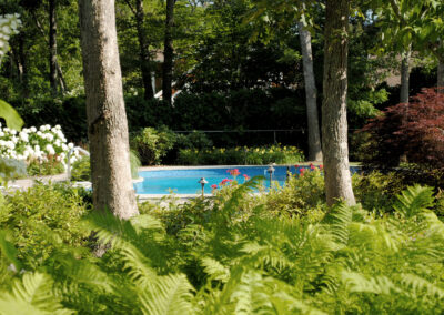 Natural, scenic planting around a pool.