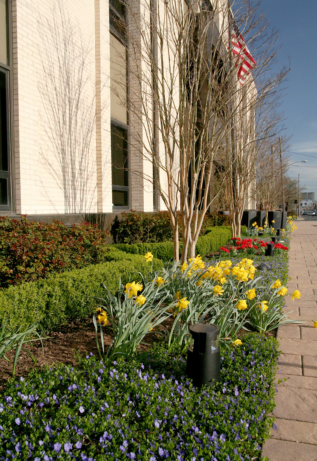 Spring planting a a commercial location.