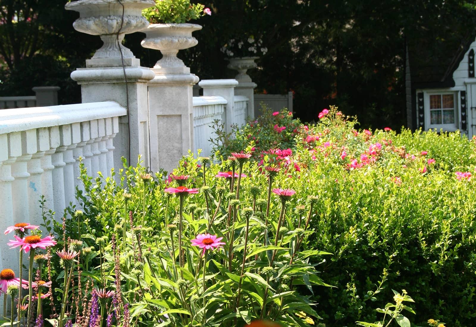 Flowering Border Garden