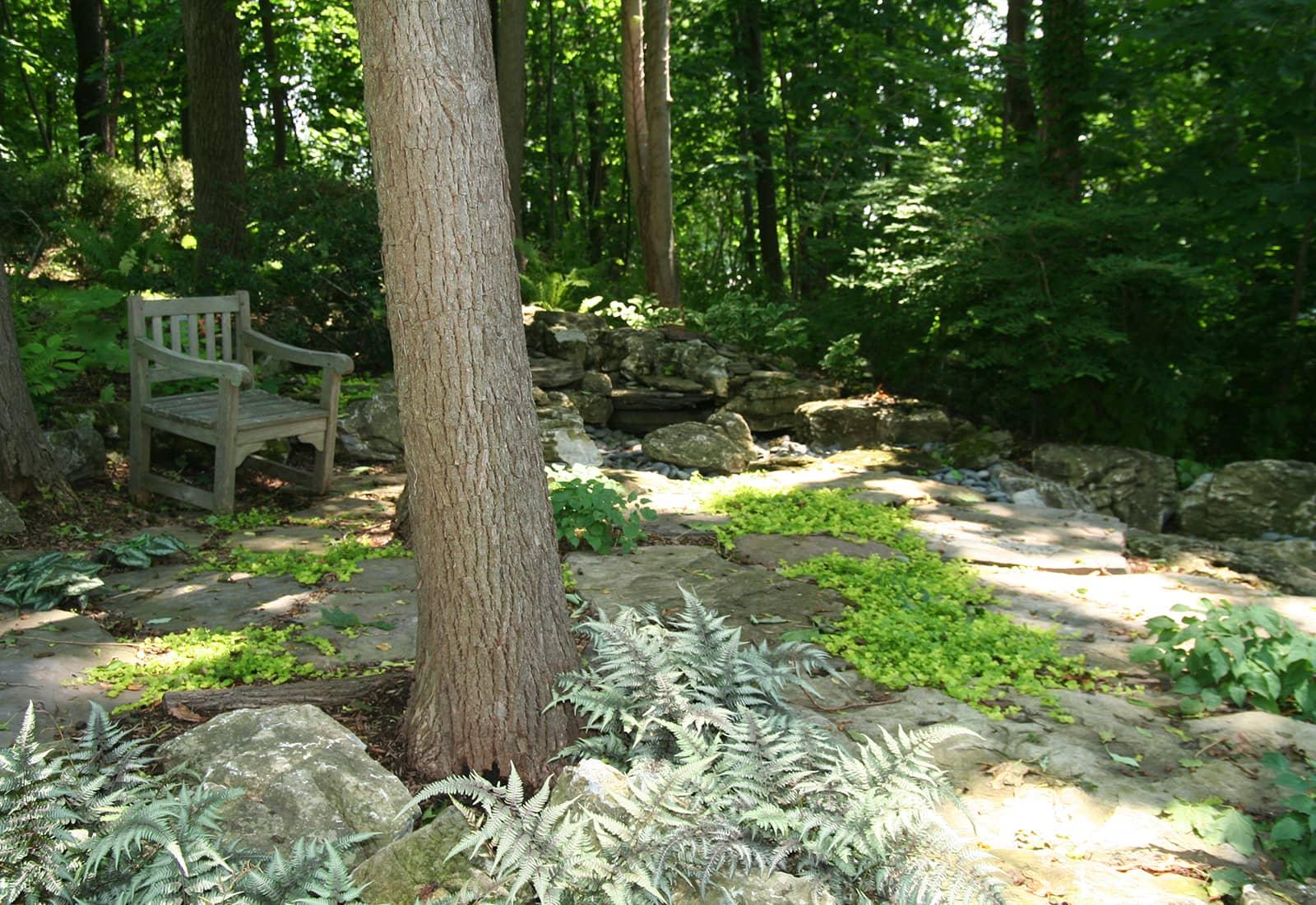Dry Garden Stream